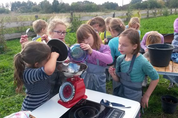 Wir kochen Holunderbeergelee im September 2015